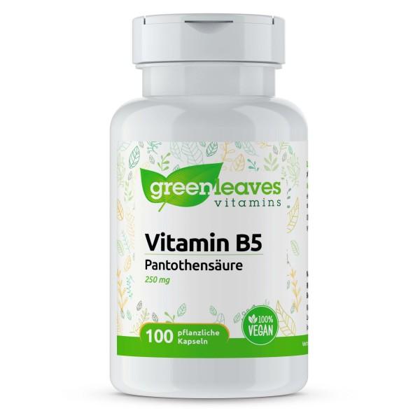 Vitamin B5 Panthothensäure 250 mg