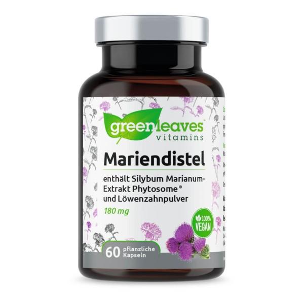 Mariendistel enthält Silybum Marianum-Extrakt Phytosome® und Löwenzahnwurzelpulver